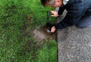 How To Cap A Sprinkler Head